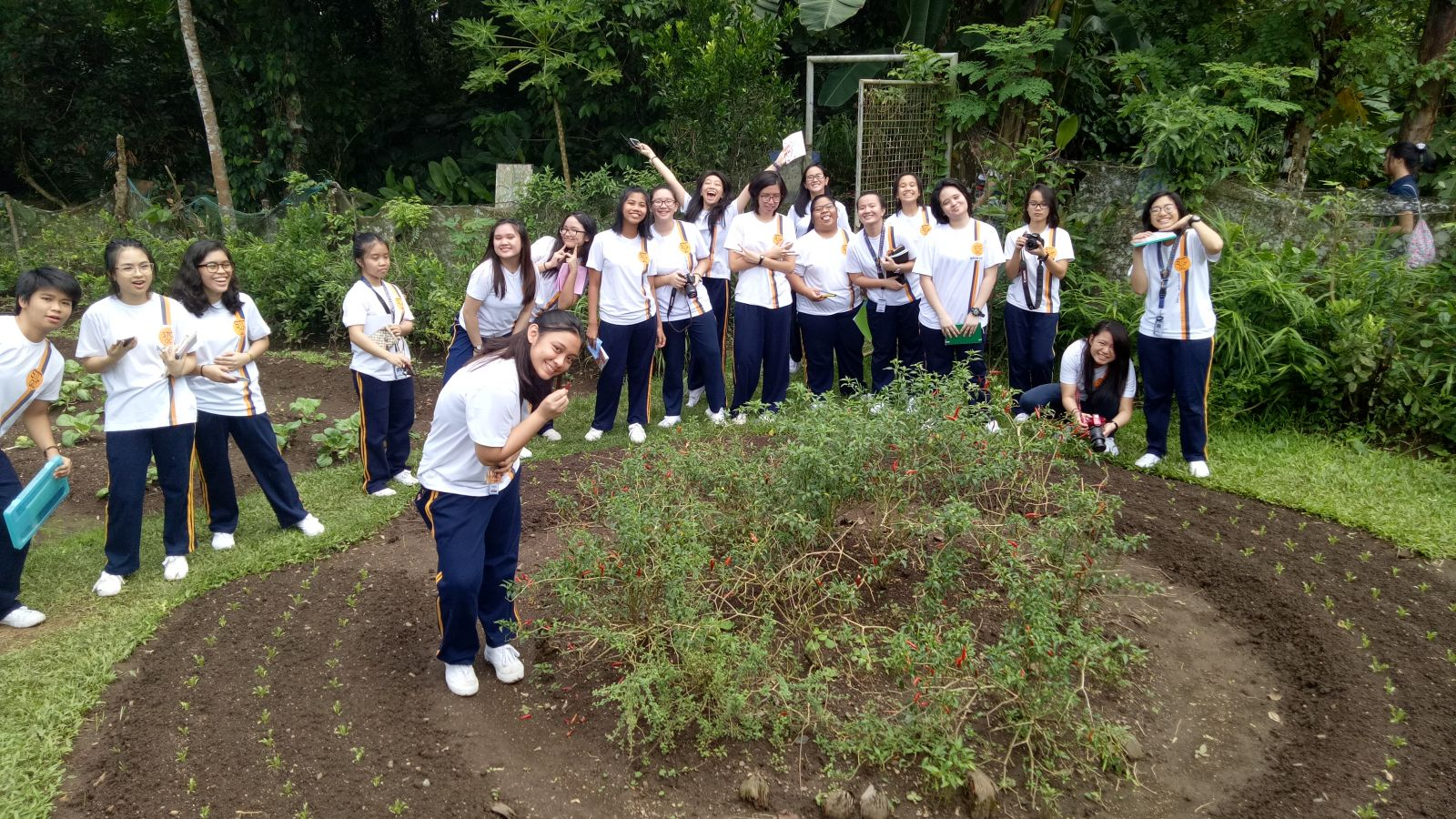 SCIENCE AREA LIVE OUT THEIR LOVE FOR MOTHER EARTH | St  Theresa